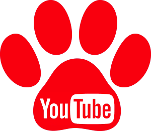 redes sociales frenchiemania youtube