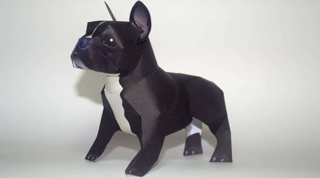 papercraft bulldog frances