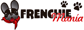 Meet an international community addicted to Frenchbulldogs, where you can learn all about frenchies. We invite you to register and subscribe for free