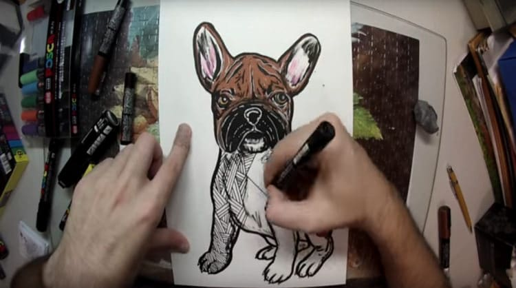 video time lapse dibujo bulldog frances