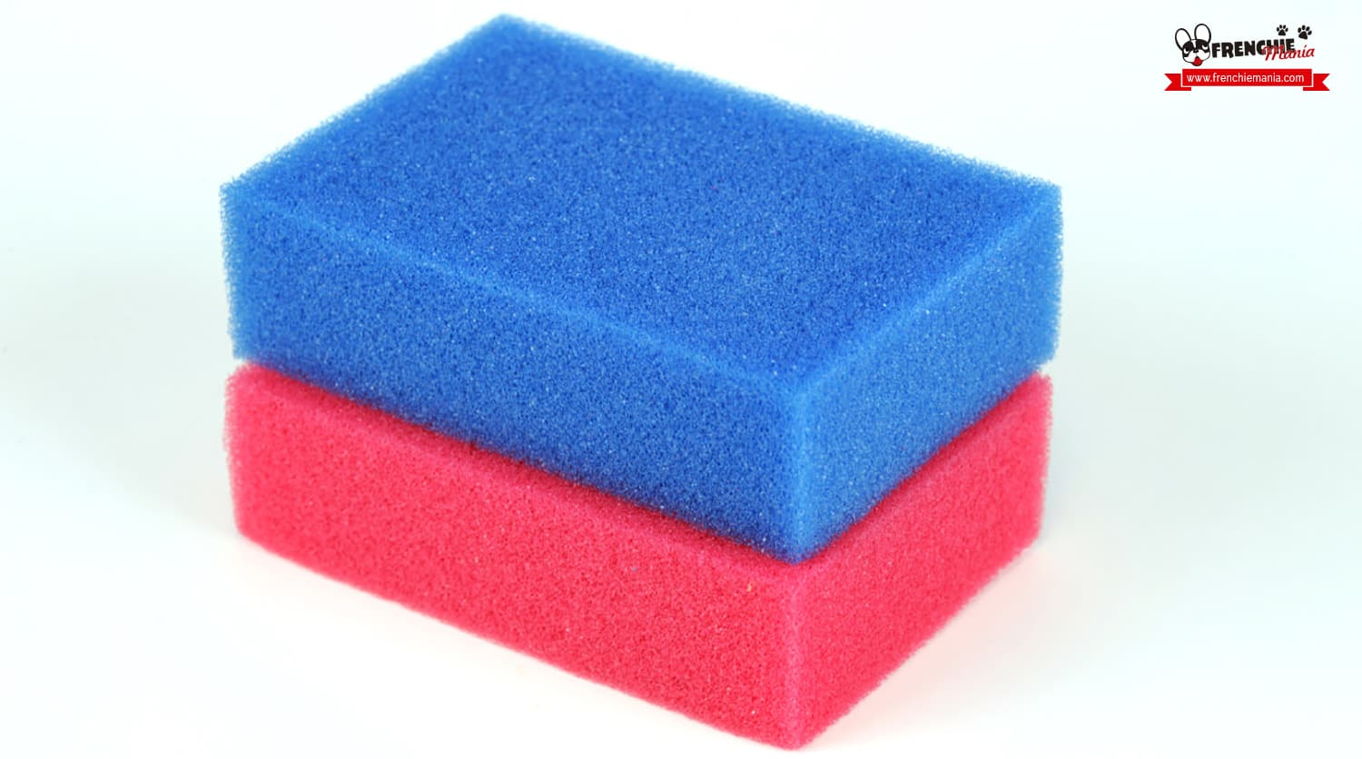 cleaning dog hair tips sponge