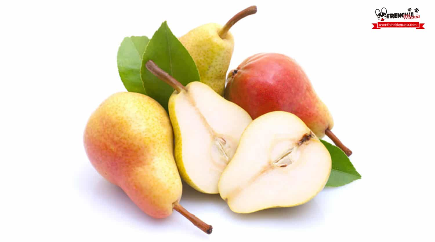 fruits for dogs pear