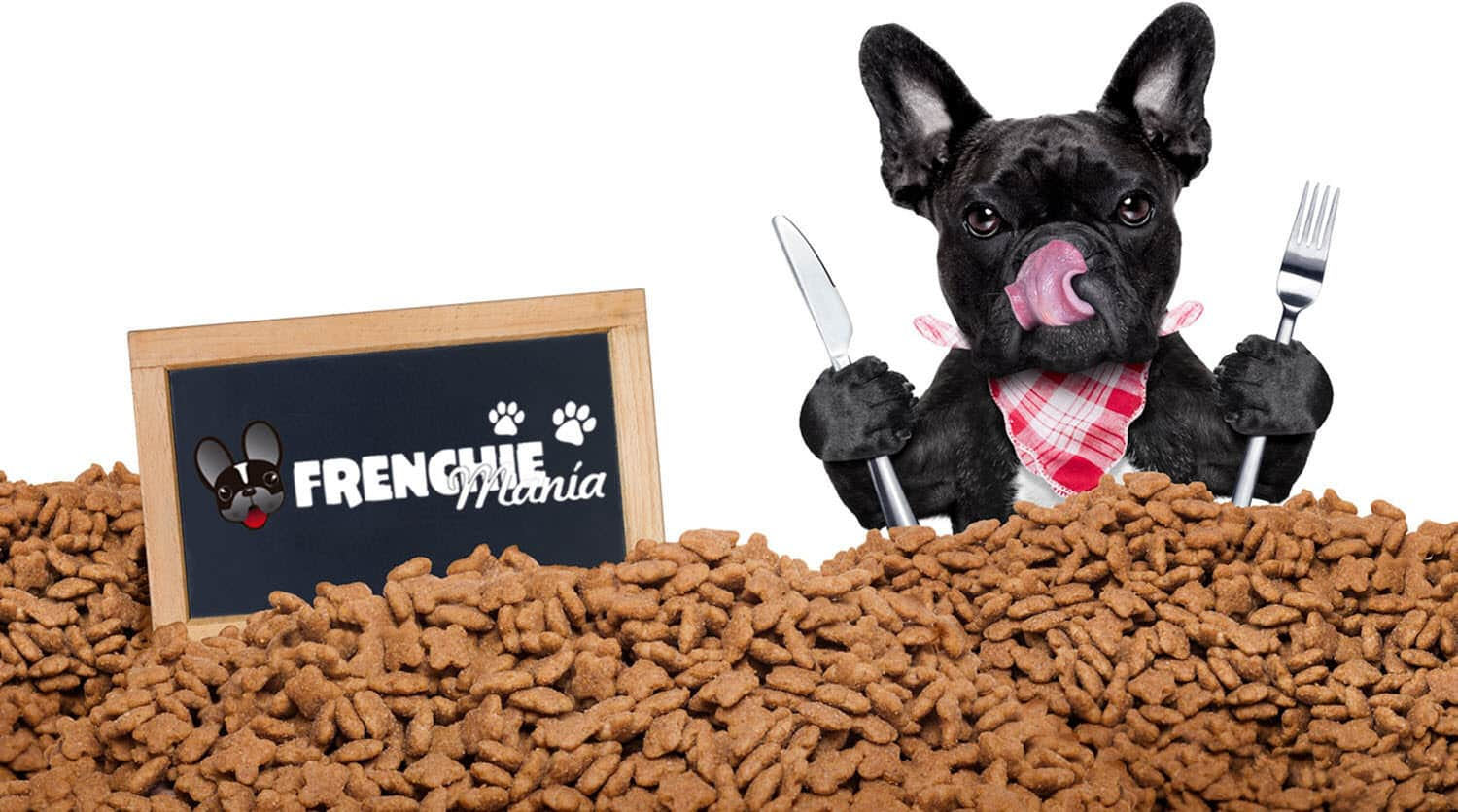 mistakes feeding french bulldog change food brand