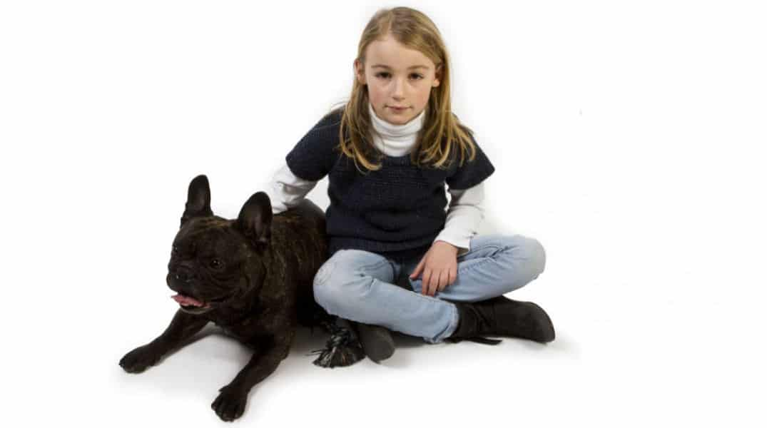 Teach Your Dog  English Words Pdf Free Download