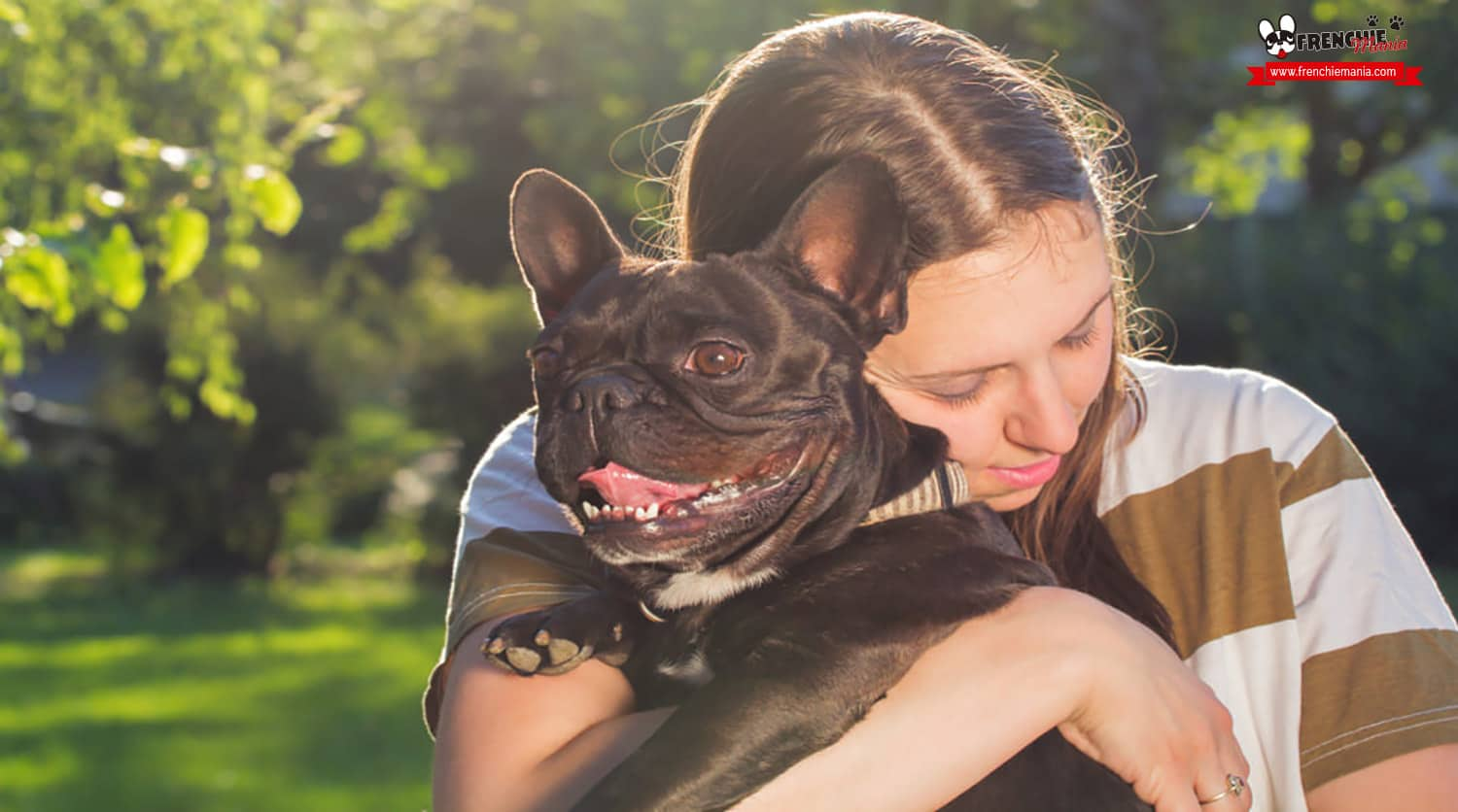 things dogs can teach us about relationships