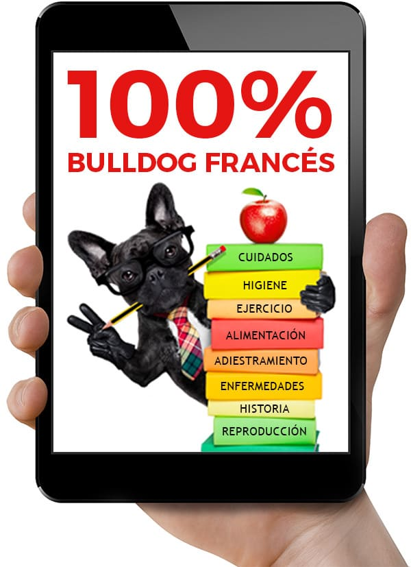 ebook bulldog frances