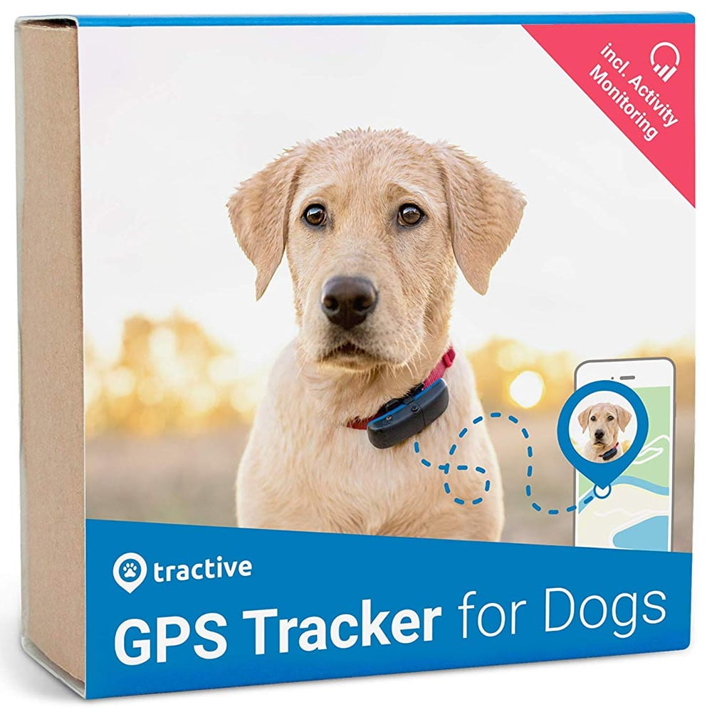 gps perros localizador movil collar gpstracker tractive
